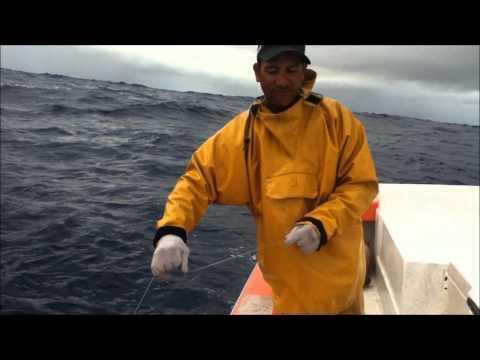 "La pêche aux gros thons ""DCP Avera-Raiatea"""