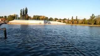 Рыбалка на северском донце в каменск-шахтинске