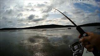 Ловля щуки в октябре на иркутском водохранилище