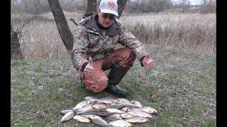 Отчеты о ловле карася нового сезона 2020 на дубравном