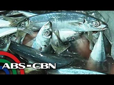 Mabisang lunas para sa kuko halamang-singaw sa kanyang mga paa ng mga video