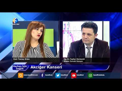 Herkes İçin Sağlık Op Dr Tayfun Kermenli Gögüs Cerrahi Uzmanı Akciğer Kanseri 24 11 2017