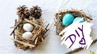How to make a birds nest    Easy DIY Birds nest