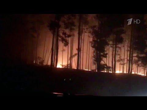 Неосторожное обращение с огнем могло стать причиной крупных природных пожаров в Ростовской области.