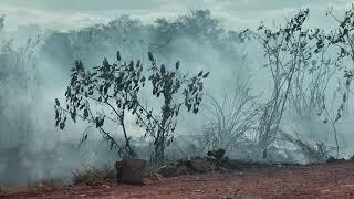 Corpo de Bombeiros registra incêndio em pastagem no Bairro Jardim Panorâmico.