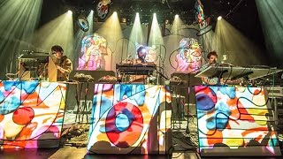 Animal Collective: Live at Terminal 5, 11/2/16