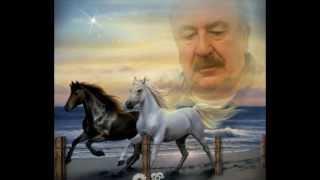 Kahraman ÖZLÜ-Zevkin Ne İse Söyle Hicap Eyleme (SÛZNÂK)R.G.