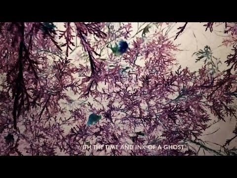 José González - With the Ink of a Ghost (Lyric Video)