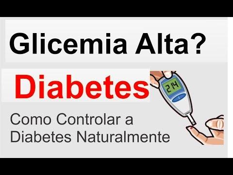 Diabetes mellitus tipo 2 Surkova majors melnikova