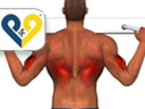 Lextension des muscles du dos de la photo