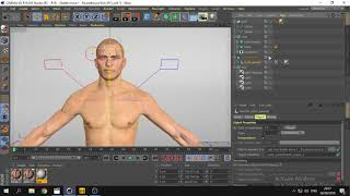 3D Animation Tut 5/6 - Cinema 4D R19 Rig, Weighting, Pose