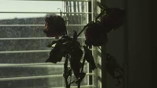 Kadr z teledysku Around The Corner (The Comfort Song) tekst piosenki Per Gessle