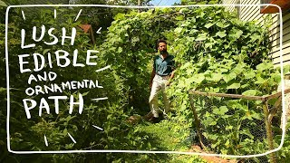 Growing Herbs In Your Edible Garden Path