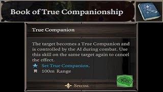 True Companions MOD