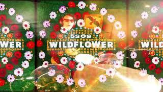 Ashton Irwin Playing Wildflower