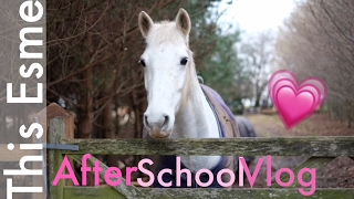 After School Vlog   Winter   This Esme