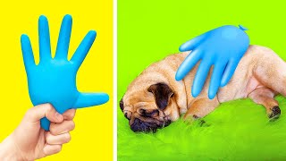 INCREDIBLE HACKS & GADGETS FOR PET OWNERS