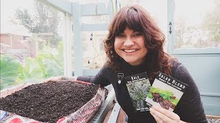 The $9 Container Garden | Growing In Soil Bags | Cheap Gardening Ideas