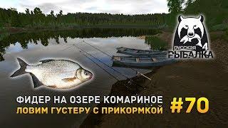 Русская рыбалка 4 #70 - Фидер на озере Комарином. Ловим Густеру с прикормкой
