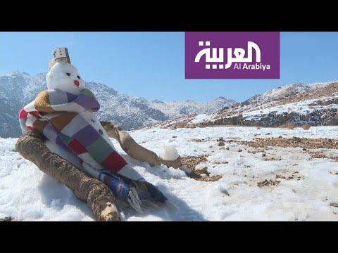 العرب اليوم - شاهد: الصقيع على أبواب الخليج العربي