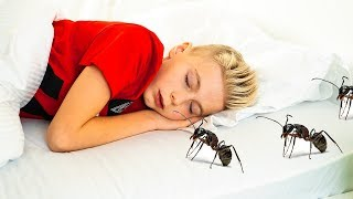 А что ЕСЛИ...Муравьи в моем доме! And what if ... Ants in my house!