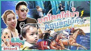 Baby Bump 2 | ไทก้า..ตะลุยโลกใต้น้ำครั้งแรก!!! EP.83