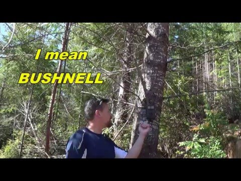 Bushnell Trophy Cam  HD Essential Trail Cam Review