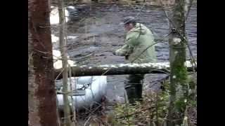 Рыбалка в районе кировска