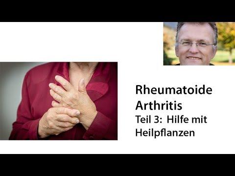 Hilfe bei Rheumatoide  Arthritis - Teil 3:  Heilpflanzen