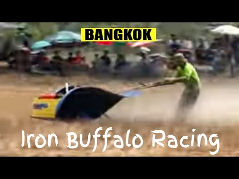 Iron Buffalo racing on the outskirts of Bangkok