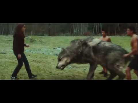 Elokuva: Twilight - Uusikuu