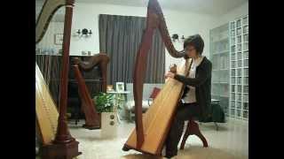 Minstrel Boy / Sally Gardens on Egan(Salvi) Harp