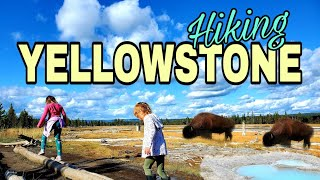 Yellowstone National Park WITH LITTLE KIDS on our National Adventure