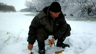 Сахалинский нии рыбного хозяйства и океанографии