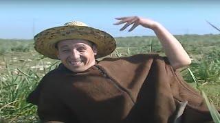 AHOUZAR - Darti Jahdak  | Music , Maroc,chaabi,nayda,hayha, jara,alwa,100%, marocain