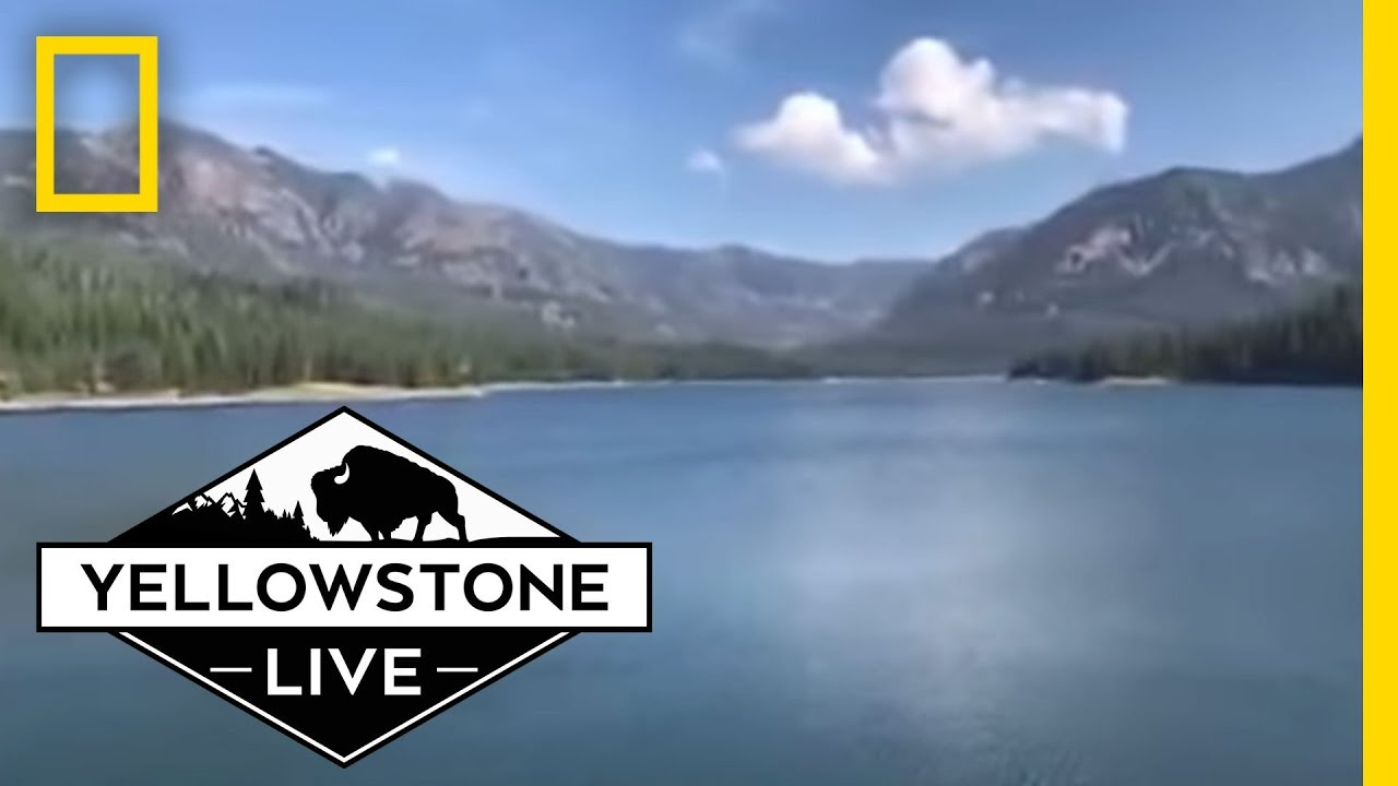 Stunning Views LIVE From Hyalite Canyon | Yellowstone Live thumbnail