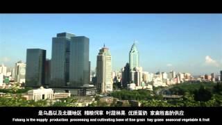 Video : China : FuKang 阜康, XinJiang province