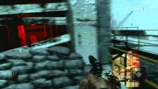 V-R11 Somebody else gets the V-R11 gun Black Ops new Maps DLC2 Call of the Dead