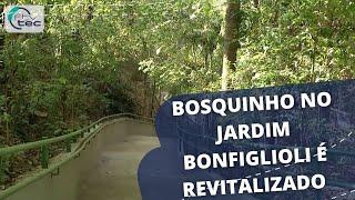 Bosquinho do Jardim Bonfiglioli é entregue totalmente revitalizado para a população