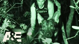 Live PD: Most Viewed K9 Busts | A&E