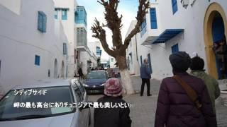 チュニジアカルタゴTunisiaCarthago13