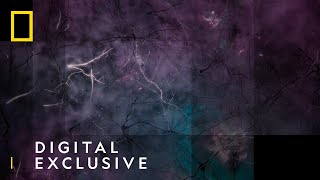 One Grain of Salt | Cosmos: Possible Worlds | National Geographic UK