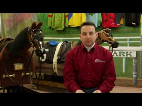 Overview of the Skills of a Jockey