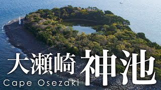 絶景空撮 大瀬崎 神秘の自然と信仰の岬 - Aerial view of Cape Osezaki - Secret nature and religious cape -