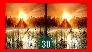 VR Video 3D Relaxing Walk in Forest VR 360 [Google Cardboard VR Box 360] Virtual Reality 3D