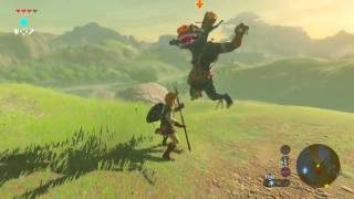 IT'S RAINING MONEY!! The Legend of Zelda Breath of the Wild