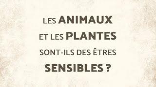 Les animaux et les plantes sont-ils des êtres sensibles? Avec Georges Chapouthier