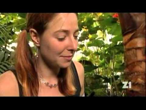 Prostatitis a její léčba sumamed