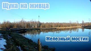 Что ловится на черном озере в гатчине