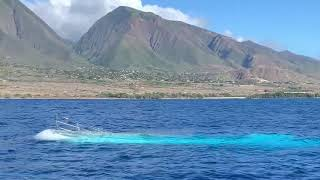 Maui: Hawaii Vacation 2020
